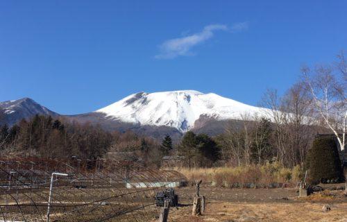 Today's KARUIZAWA